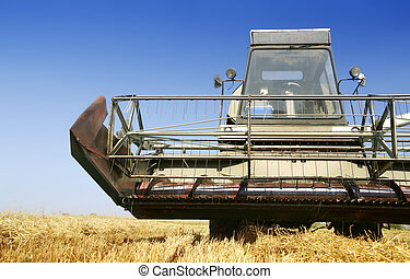 Agriculture - combine on field in hot summer