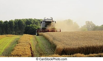 agriculture, combine harvester - Agriculture, farmland,...