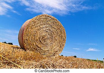 agriculture., doosje, met, stro, balen