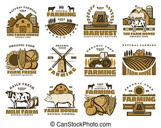 Agriculture farm, meat and dairy food
