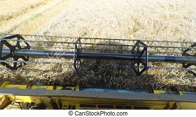Agriculture farmer yellow combine harvester on field -...