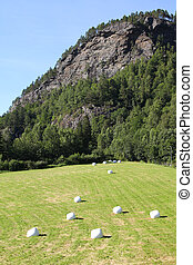 Agriculture in Norway