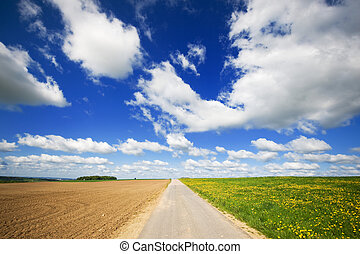 Agriculture landscape with road in the middle - Grass fields...