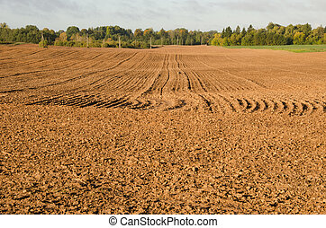 Agriculture plow field in autumn. Loam soil prepare after harvesting.