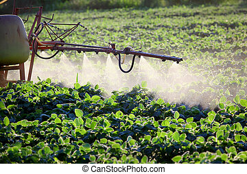 Agriculture - Spraying of soy field in early summer