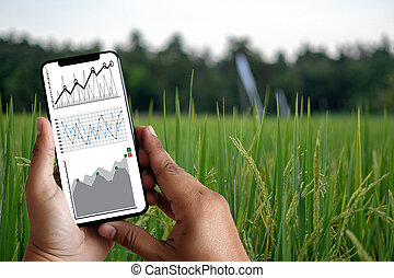 agriculture technology concept man Agronomist Using a Tablet in an Agriculture Field read a report