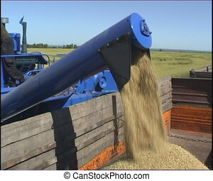 Agriculture - The Combine takes away the wheat.