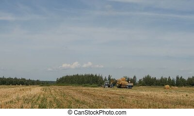 Agriculture, tractor loads bale of hay into the trailer near...