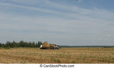 Agriculture, tractor loads haystack into the trailer near...