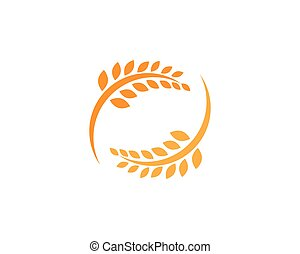 Agriculture wheat Logo Template, healthy life logo vector icon