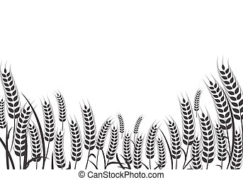 Agriculture wheat vector Illustration design - Agriculture ...