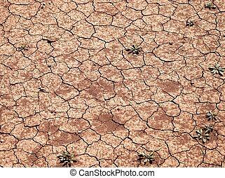 agrietado, seco, land., suelo, sin, agua