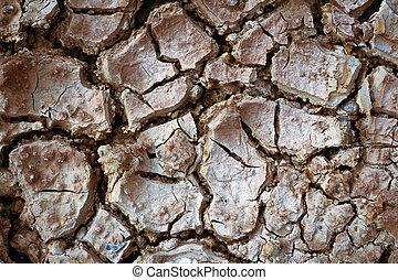 agrietado, seco, tierra, sin, water-color, efecto