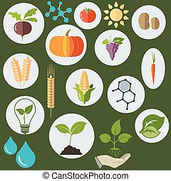 Agronomic Agricultural icons flat style, Science biology research chemical formulas, plants, sun and water drops - vectors