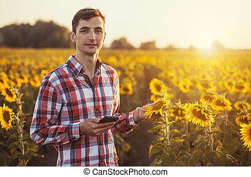 agronomist, χρησιμοποιώνταs , ένα , δισκίο , για , διαβάζω , ένα , αναφορά , επάνω , ένα , ηλιοτρόπιο , γεωργία αγρός