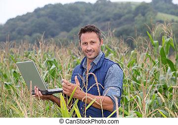 agronomist, computadora de computadora portátil, cereales, analizar