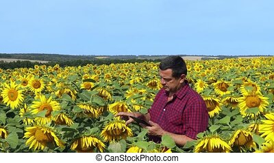 Agronomist in sunflower field - Agronomist with electronic ...