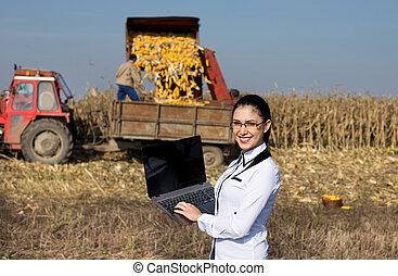 agronomist, laptop, kobieta, kukurydziane pole