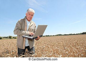 agronomist, laptop komputer, pszeniczysko