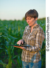 agronomist, nagniotek, komputer, tabliczka, pole