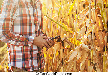 Agronomist Using a Tablet for read a report on the agriculture Field