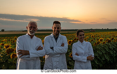 Team of agronomists in white coat standing with crossed arms in front of sunflower field during blooming period in summer. Plant protection concept