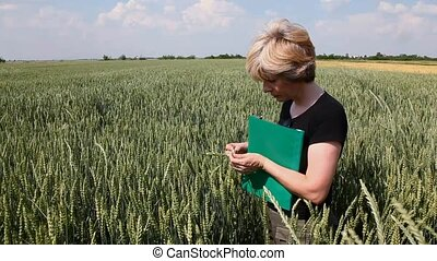Agronomy - Female agricultural expert inspecting quality of...