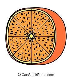agrume, frutta fresca, mandarino, mezzo