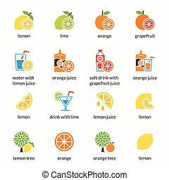 agrume, limonata, alcool, limone, bevanda, icons., arancia, vettore, pompelmo, calce