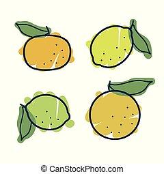 agrume, set, frutte