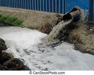 agua, américa, clarification, sur, planta