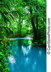 agua azul, turquesa, río, celeste