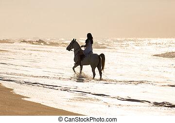 agua, caballo, mujer, paseo, joven
