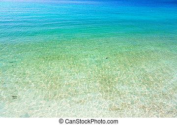 agua, claro, océano