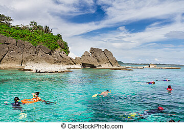 agua, corales, mar