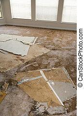 agua, dañado, cartón de yeso, el escaparse, alfombra