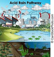 agua, diagrama, edificios, lluvia ácida