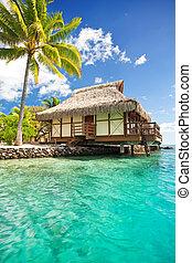 agua, encima, bungalow, pasos, laguna