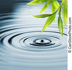 agua, fresco, bambú, encima, hojas
