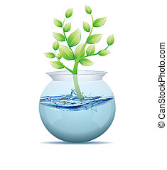 agua, olla, árbol