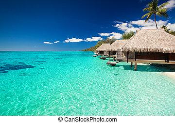 agua, playa tropical, pasos, chalets