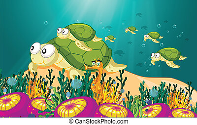 agua, tortuga