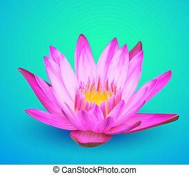 agua, vector, lirio, flor, ilustración