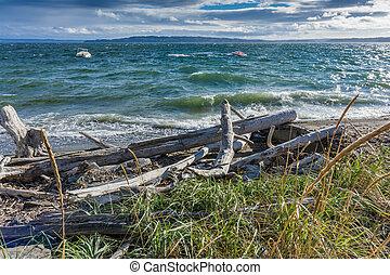 agua, vista marina, picado