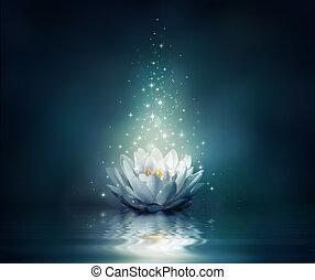 agua, waterlily, fairytale, -