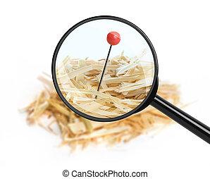 agulha, isolado, haystack., closeup, fundo, branca