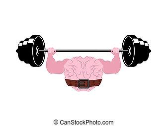 agyvelő, erős, agyonüt, emberi, pumpa, erős, barbell.