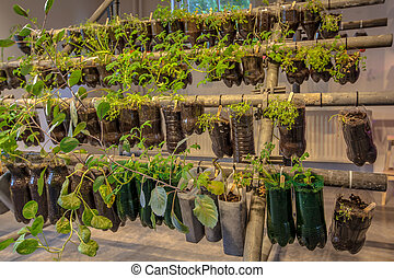 ahorcadura, cestas, jardín vegetal