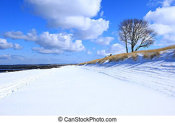 Beach at Ahrenshoop in winter, Baltic Sea, Mecklenburg-West Pomerania, Germany