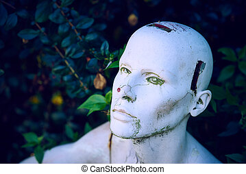 A mannaking head shot against a background of vegetation.